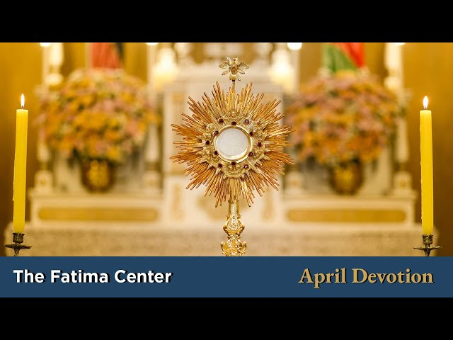April Devotion: The Most Blessed of All Sacraments | Monthly Devotions with Fr. Shannon Collins