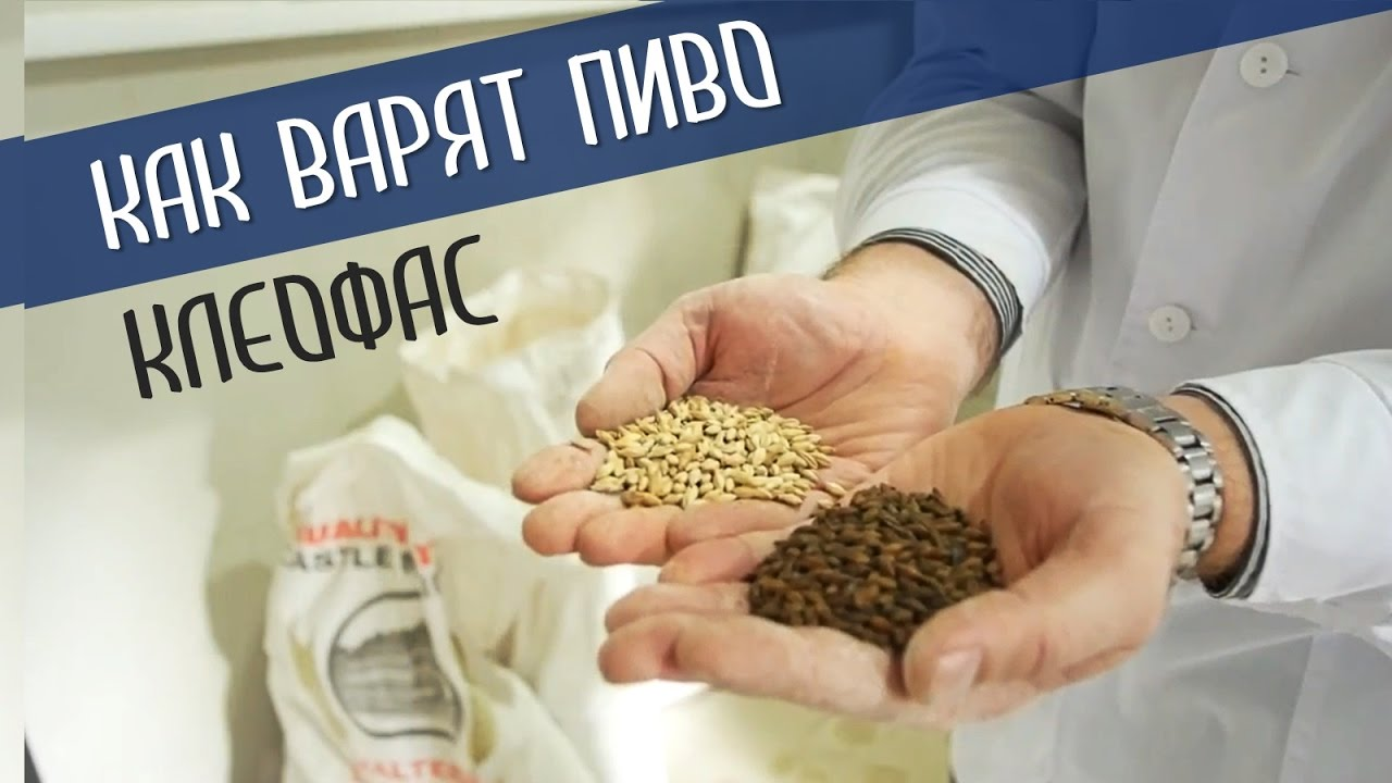 Варка пива на пивоварне GRAINFATHER. Видео-инструкция. - YouTube