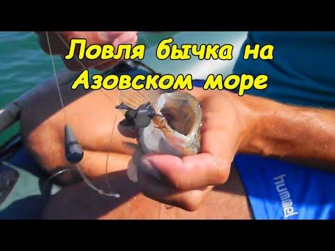 Ловля бычка в Азовском море