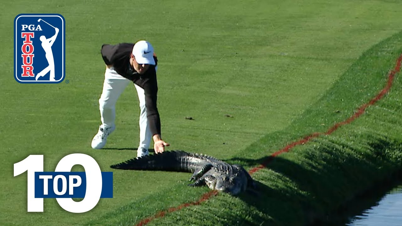 Animal Encounters on the PGA TOUR
