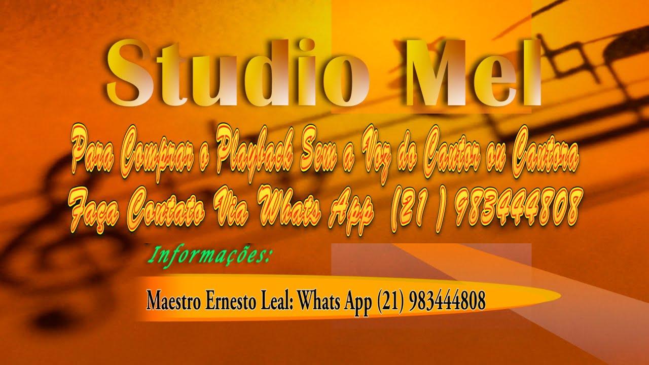 Download C0304   Música   Total   Netinho