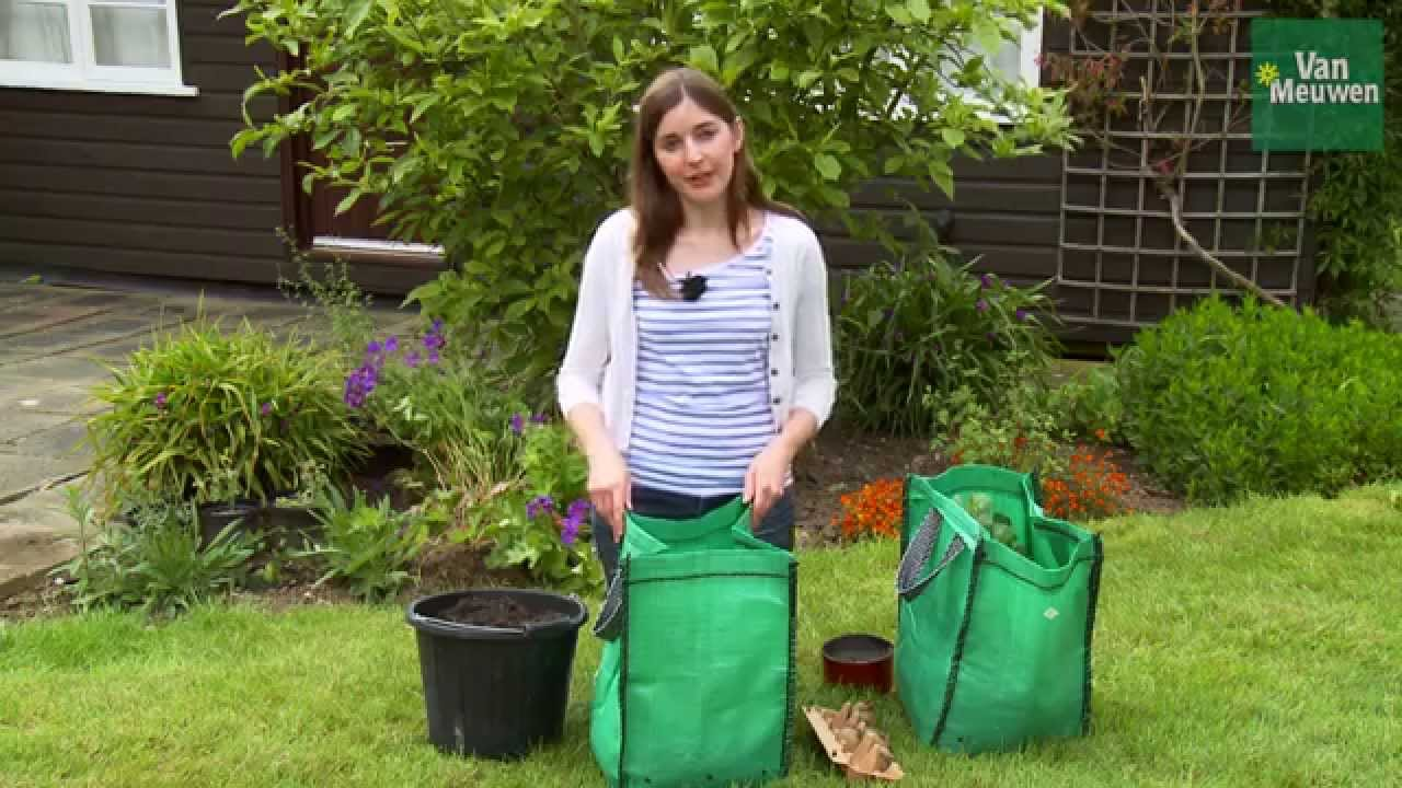 how to grow potatoes in a bag youtube