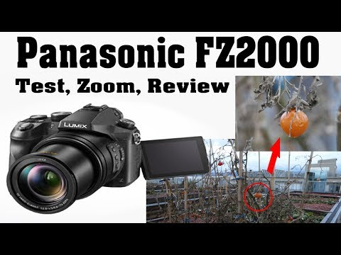 panasonic-lumix-fz2000,-test,-zoom-4k