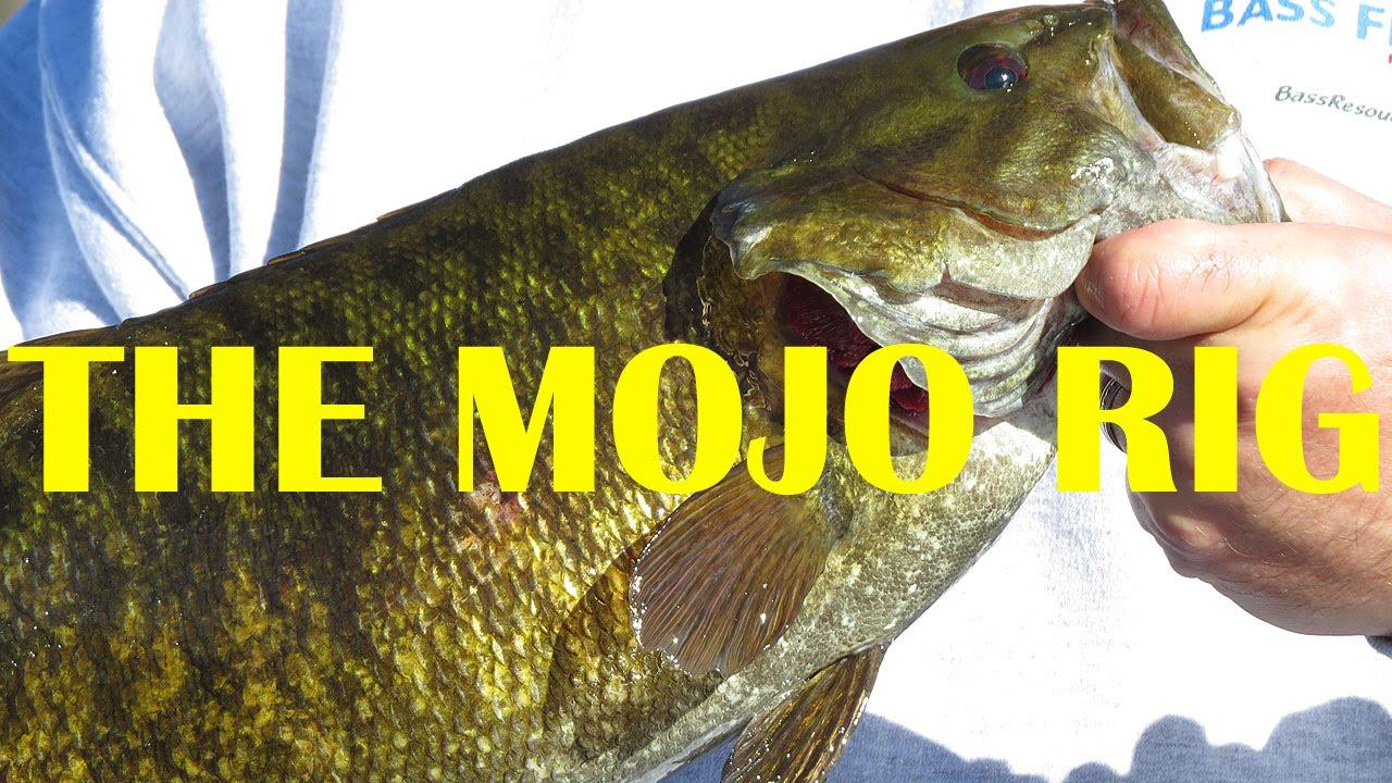 The mojo rig split shot rig how to bass fishing for Split shot fishing