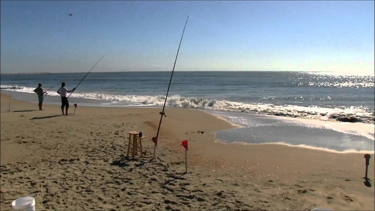 Cape hatteras anglers club surf fishing tournament 11 3 for Cape hatteras fishing report