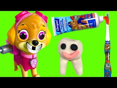 Paw patrol skye loses a tooth dentist toy surprises stop motion