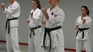 Kata workout with sensei Ries van Toorn. Okinawa Goju-Ryu Karate-do. Part 1