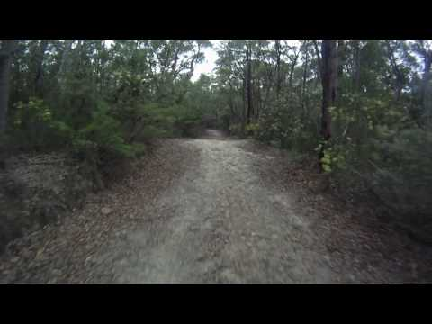 Mountview Road jumps - old Lake Woodford catchment