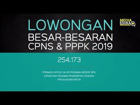 resmi-!!-lowongan-besar-besaran-cpns-&-pppk-2019---pendaftaran-cpns-2019