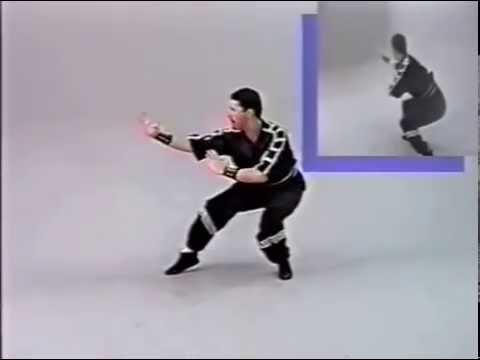 hung gar kung fu pdf