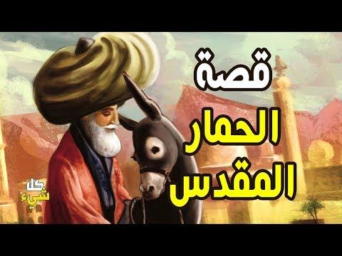 كيف أحب العرب هذا الحمار وقدسوه؟.. قصة الحمار المقدس