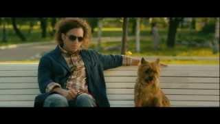 Dubler - собаки и секс - юмор