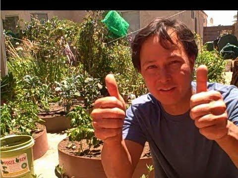Each One Teach One – Open Source Organic Gardening