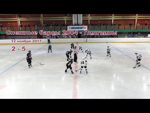 Снежные барсы 2004 - Пингвины ОПМ 2017/2018
