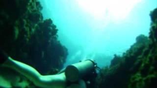 Scuba in Grand cayman