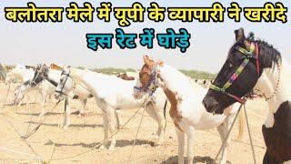 Balotra horse market 2019-देखिए मेले में यूपी के इस व्यापारी ने किस रेट में खरीदे घोड़े(9690264202)