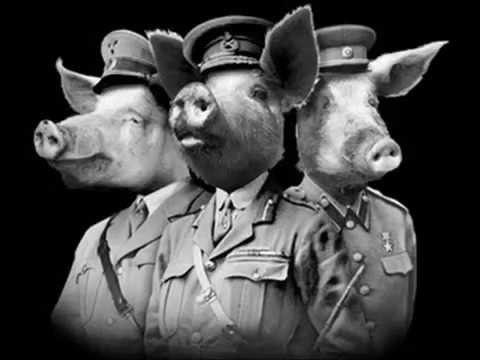 MICHAEL MAY   WAR PIGS   BLACK SABBATH  (COVER)
