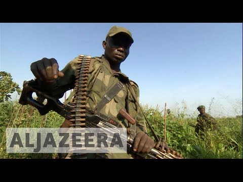 DR Congo: Thousands of troops deployed to push out rebels from wildlife park