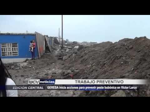GERESA previene peste bubónica en Víctor Larco