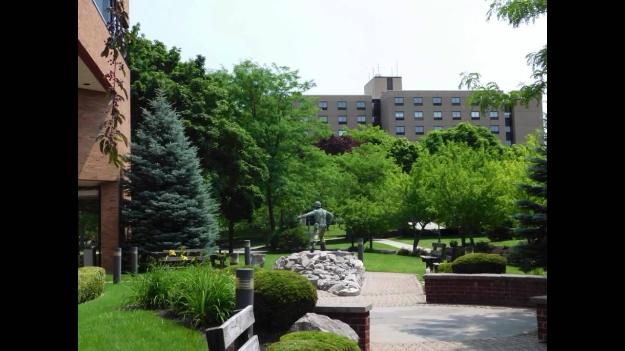 Alumni US | Niagara University, Buffalo/Niagara, New York Area