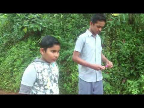 Malayala movie Premam bgm raihan and ashiq