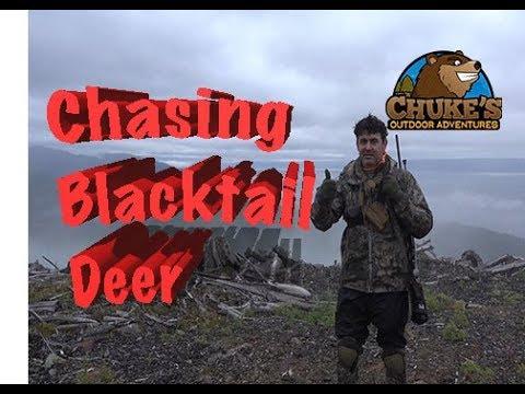 Chasing Sitka Blacktail Dear In Southeast Alaska  Early Season