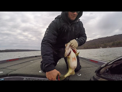 GoPro | Lake Guntersville | Day 2 Highlights