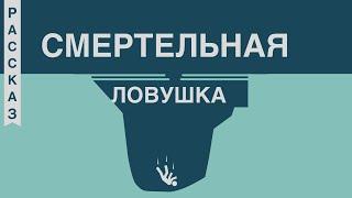 Смертельная ловушка - Родион Берёзов (Сергей Костров - Герой Советского Союза