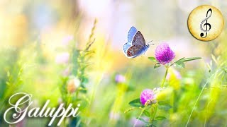 Classical Music for Studying, Concentration, Relaxation   Study Music   Piano Music Instrumental