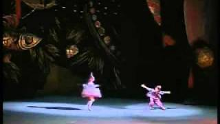 1989 Bolshoi Ballet Nutcracker excerpts 8 12 by Grigorovich