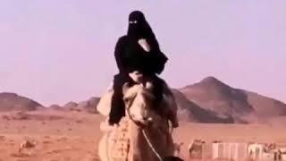 اجمل بنت تقود البيعر تحياتي من سيناء للسعويه Mp3