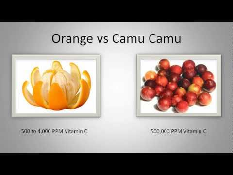 Camu Camu Berry Health Benefits