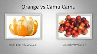 Camu Camu Berry Health Benefits