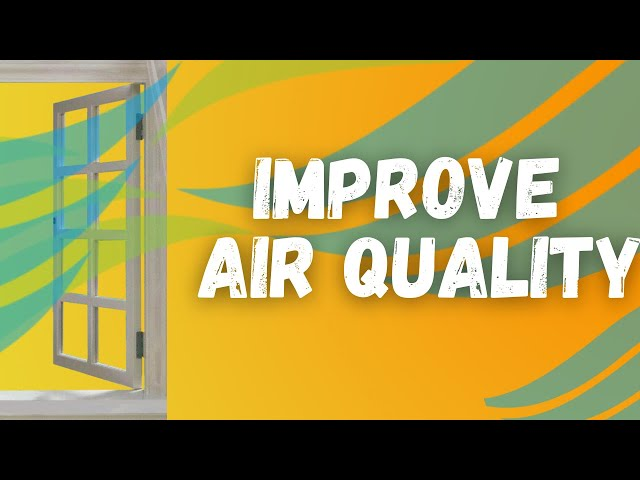 Simple Ways to Improve AIR QUALITY (For a Healthy Home)
