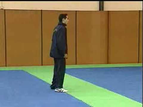 Taekwondo - Entrenamiento De Velocidad (2)
