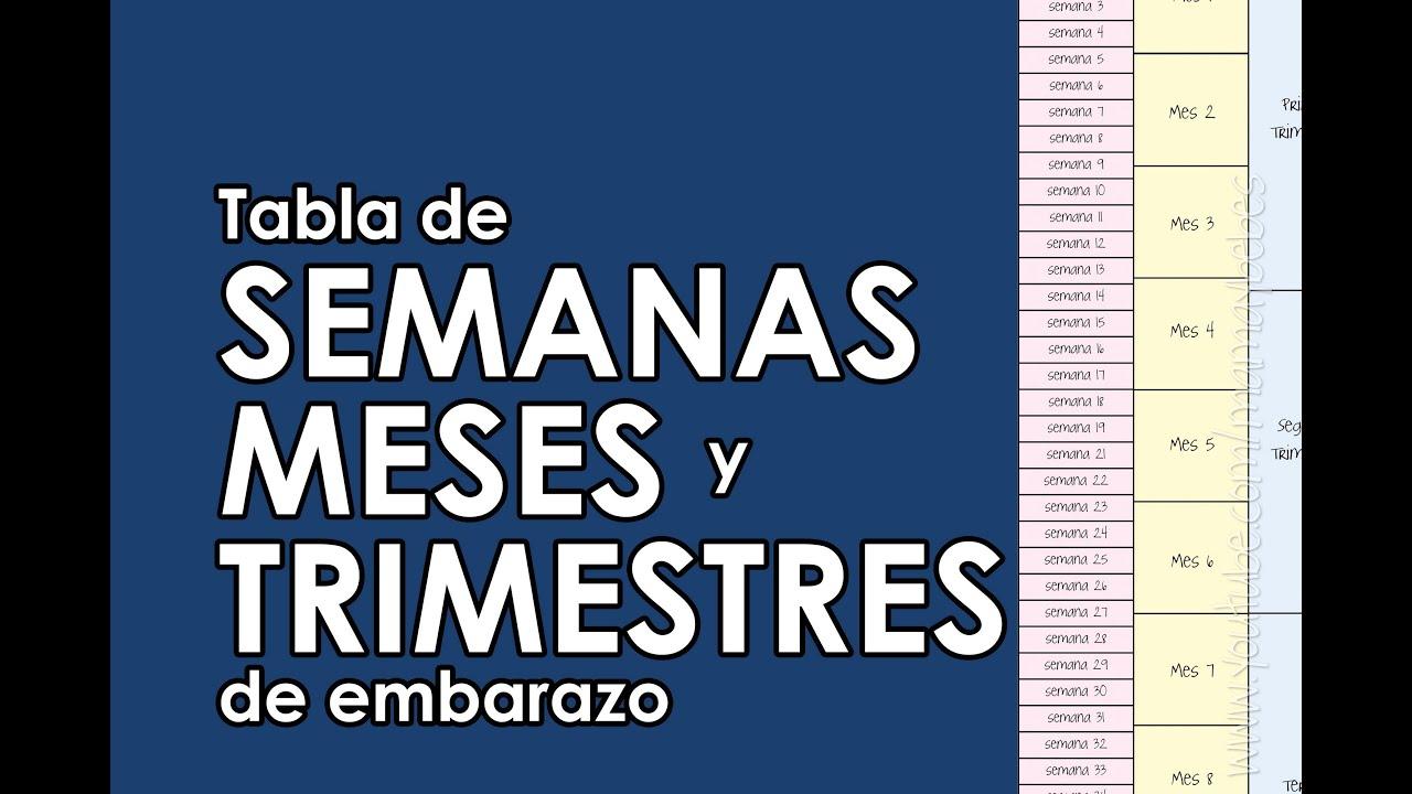 18ec697c4 Calcula Las Semanas Meses Y Trimestres De Embarazo