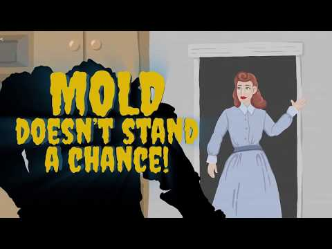 Eliminate Mold in Your Dishwasher, Washing Machine and Refrigerator
