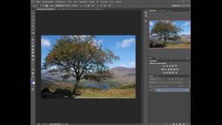 работа с каналами, как заменить фон на сложной фотографии фотошоп cs6