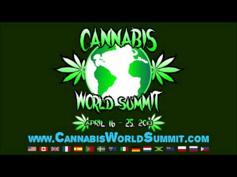 2013 Cannabis World Summit - Day 7 - Lincoln Horsley - Cure Your Own Cancer