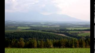 Vukasin Vule Jevtic - Najlepse narodne pesme, prvi deo