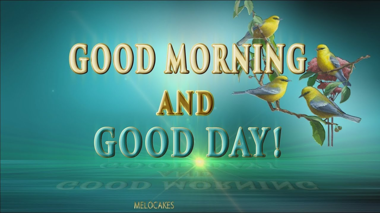 Good Morning And Good Day 4k Animation Greeting Cards Youtube