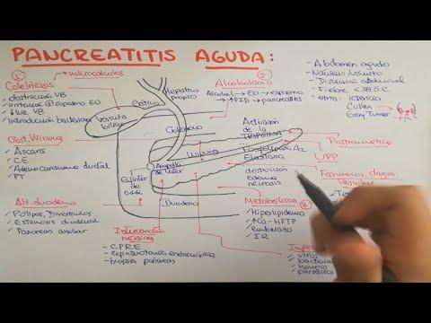 Pancreatitis: causas, fisiopatología, clínica, diagnóstico y tratamiento