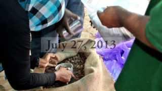 SCAON - To Sudan with Love Ramadan Project