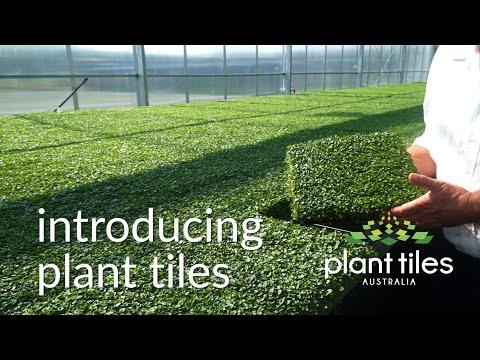 Plant Tiles Australia