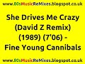 Miniature de la vidéo de la chanson She Drives Me Crazy (David Z 12″ Version)