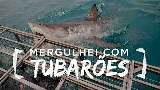 MERGULHO COM TUBARAO BRANCO E TABLE MOUNTAIN (CAPE TOWN) - Embarque Imediato