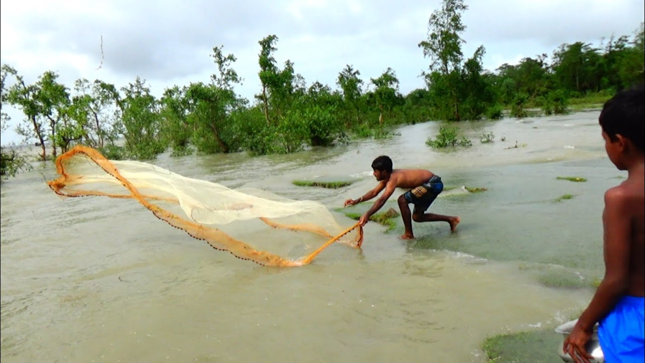 Traditional cast net fishing in river | Net fishing in river | Net fishing in the sea