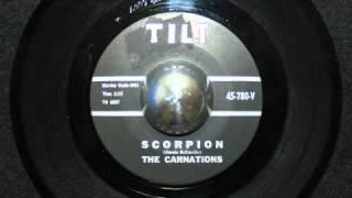 The Carnations / Scorpion