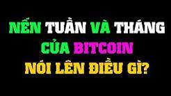 #115: Phân tích biểu đồ bitcoin và BTC.D trong Weekly và Monthly | Minh Thắng Tradecoin