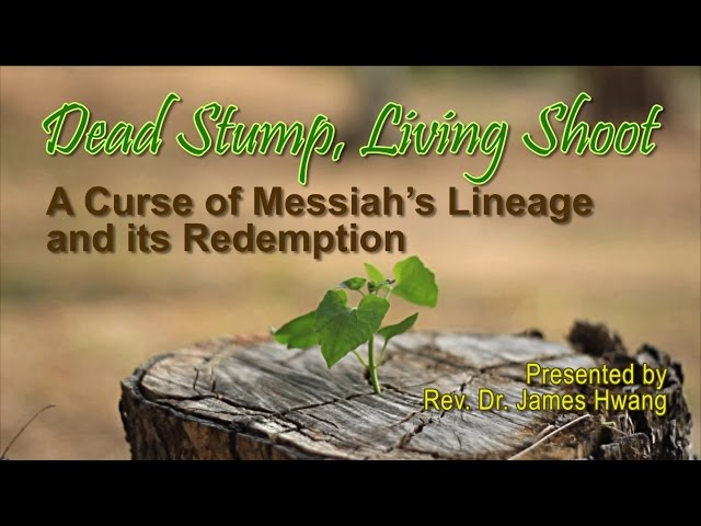 Dead Stump Living Shoot-- A Curse of Messiah's Lineage and its Redemption